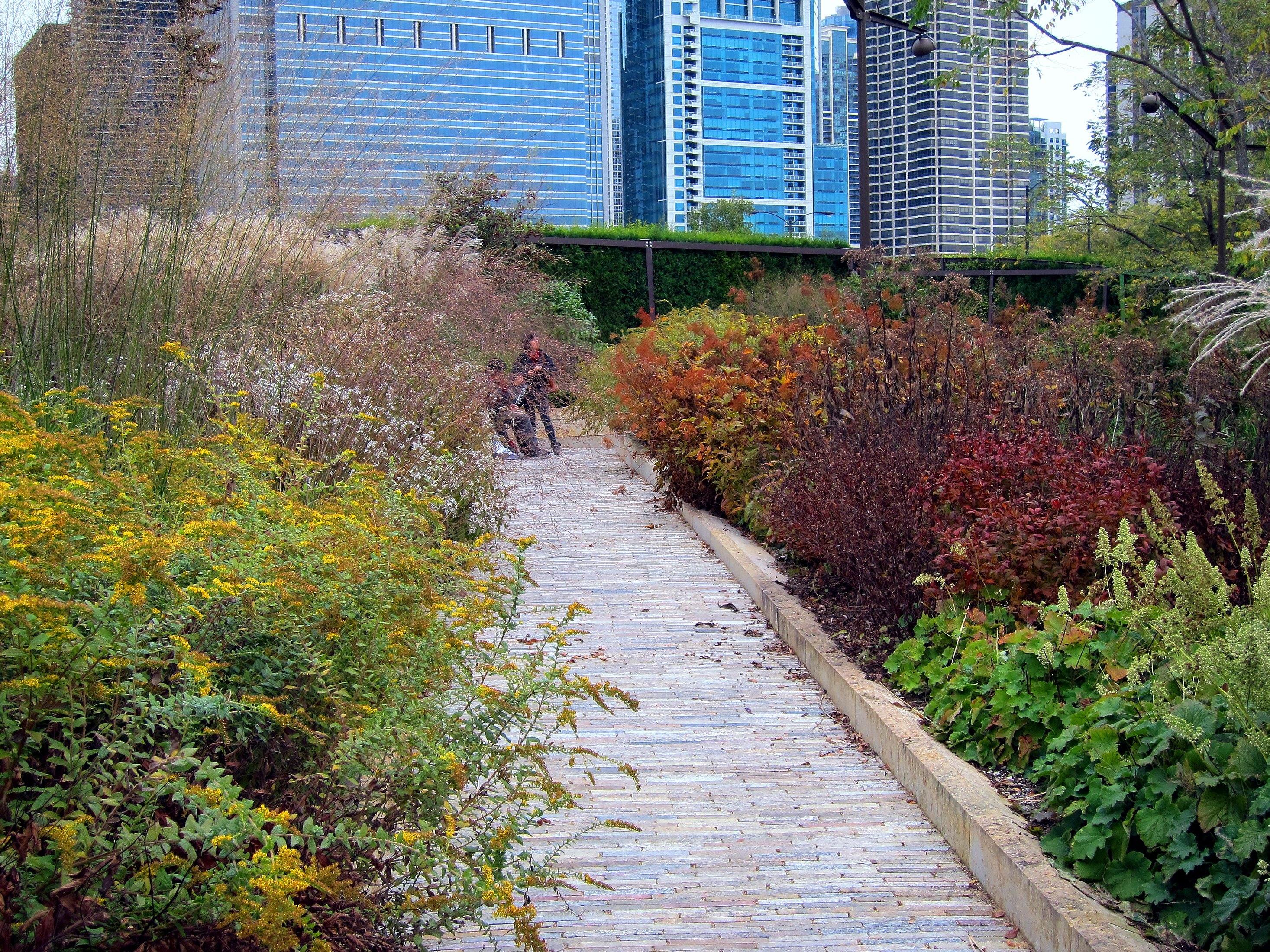 Lurie Garden - Chris Gent | Landscape Studio - Urban Design ...